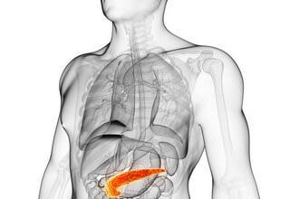 Народные средства для восстановления печени после химиотерапии, антибиотиков, алкоголя. Рецепты лечения печени, желчного пузыря, поджелудочной железы, почек, желудка