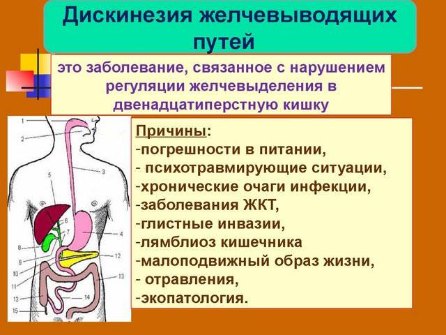 Гипертоническая дискинезия желчевыводящих путей - причины ...
