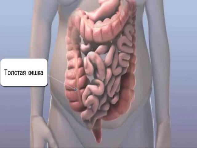 Снимок брюшной полости