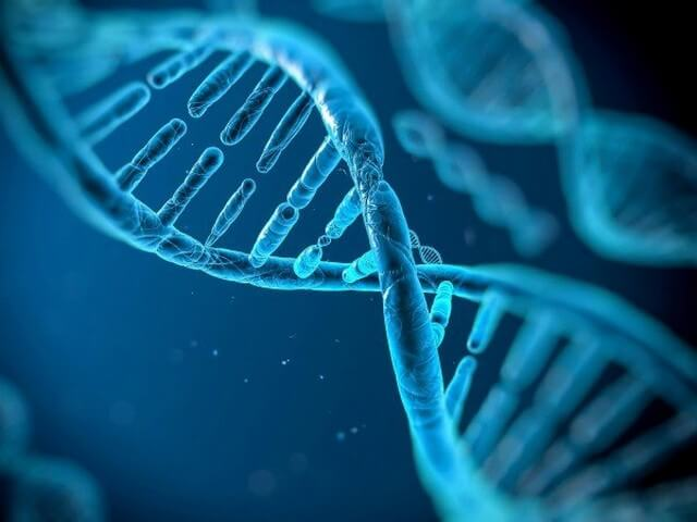 Наследственность генов