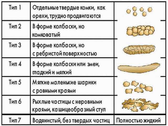 Типы каловых масс